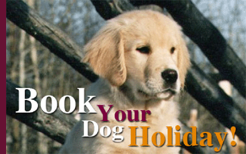 Book Your Dog Holiday